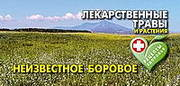 Открытки «Неизвестное Боровое. Лекарственные травы и растения»