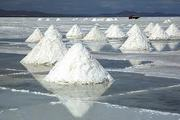 Поваренная соль- (Казахстан. ЖаксыТуз)