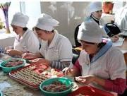 Продам оптом замороженные полуфабрикаты натуральные 100% мясо